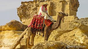 (Egypt_Cairo_3494.jpg)